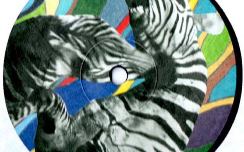 Vechtende zebra's op het label van kant B